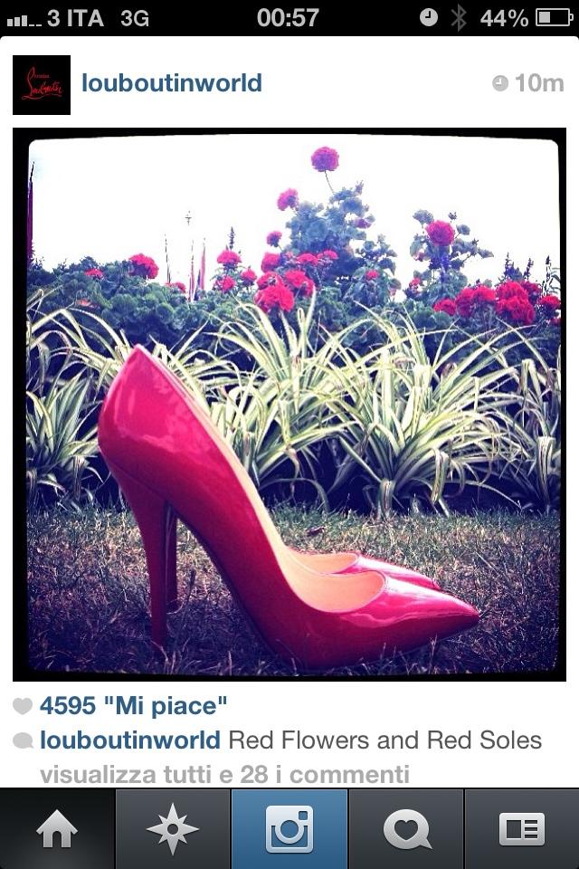 Best of instagram:Louboutinworld